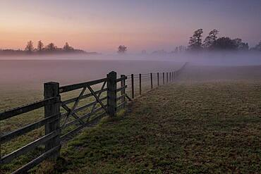 Gated field filled with mist at sunset, Chelford, Cheshire, England, United Kingdom, Europe