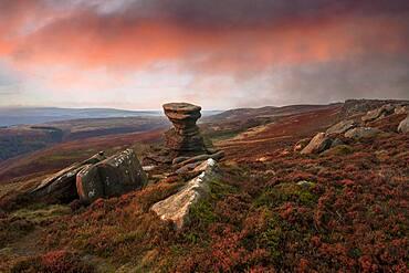 The Salt Cellar Rock, Derwent Edge, with heather moorland, Peak District National Park, Derbyshire, England, United Kingdom, Europe