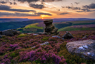 The Salt Cellar rock formation with blanket of heather at sunset, Derbyshire