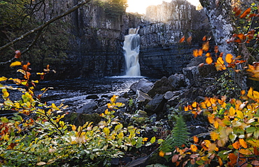 High Force and River Tees framed by autumn leaves, North Pennines AONB (Area of Outstanding Natural Beauty), Middleton-in-Teesdale, Teesdale, County Durham, England, United Kingdom, Europe