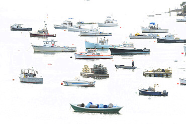 Fishing Fleet anchored in cove, Maine, New England, United States of America, North America