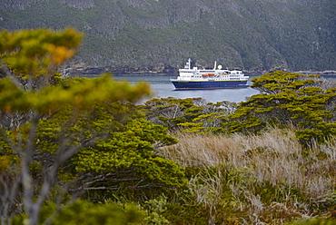 National Geographic / Lindblad Explorer, Isla de Los Estados (Staten Island), Tierra del Fuego, Argentina