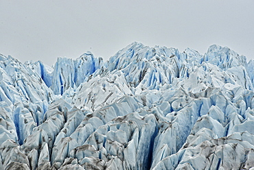 Brüggen Glacier, also known as Pío XI Glacier is the only advancing tidewater glacier in South America, Southern Patagonian, Chile