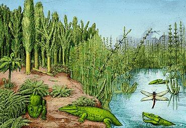 Prehistoric, Permo-Carboniferous Landscape