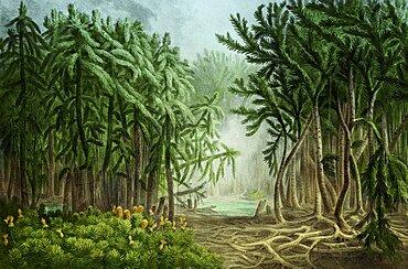 Prehistoric, Devonian Landscape