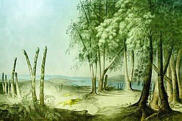 Prehistoric, Triassic Landscape