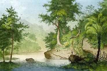 Prehistoric, Eocene Landscape