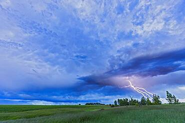 A lightning bolt comes out of a retreating thunderstorm, in the darkening twilight.