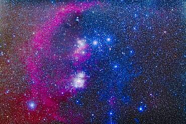A mosaic of the Sword and Belt region of Orion the Hunter, showing the diverse array of colourful nebulas in the area, including: curving Barnard's Loop, the Horsehead Nebula below the left star of the Belt, Alnitak, and the Orion Nebula itself as the bright region in the Sword.