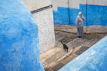 Street scene, in  Kasbah of the Udayas, Rabat. Morocco