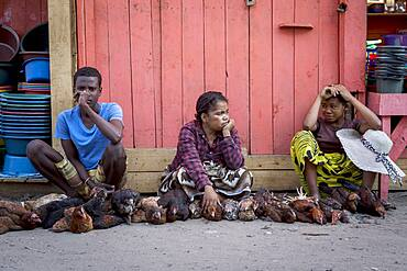 chicken vendors,  market, Morondava, Madagascar
