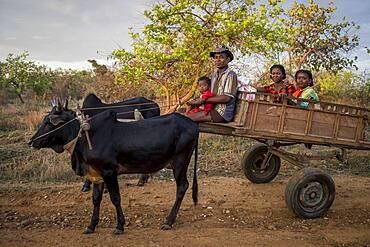 Portrait of malagasy farmer family, surroundings of Manja village, Madagascar