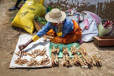Firewood stand, food market, Fianarantsoa city, Madagascar