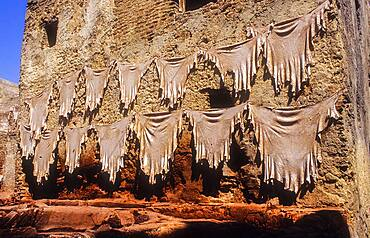 Hung skins for to dry them in the sun,Tannery, Medina, UNESCO World Heritage Site, Fez, Morocco, Africa.