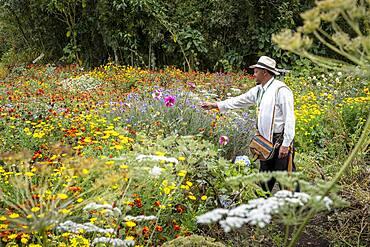 Joaquín Emilio Zapata, Silletero, flower farmer, Finca, silletera, farm, Vereda Barro Blanco,  Sector El Rosario, Medellín, Colombia