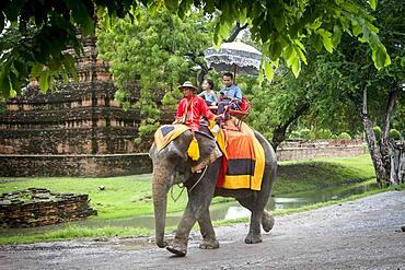 Elephant Ride, Ayuthaya, Thailand