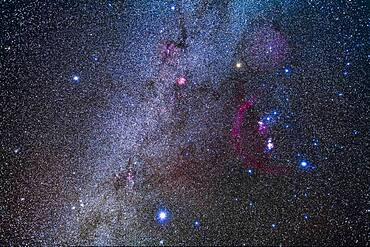 The constellation of Orion the Hunter, at right, and his two Hunting Dogs and their brightest stars: Procyon in Canis Minor (at left) and Sirius in Canis Major (at bottom).