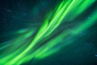 Auroral curtains at the zenith, with shades of green and cyan, from the display of September 8, 2018 taken from the Tibbitt Lake site near Yellowknife, NWT.