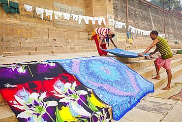 Tending the Laundry for drying, Dasaswamedh Ghat, in Ganges river, Varanasi, Uttar Pradesh, India.
