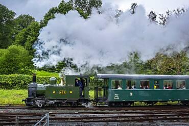Llanfair and Welshpool Steam Railway, Wales
