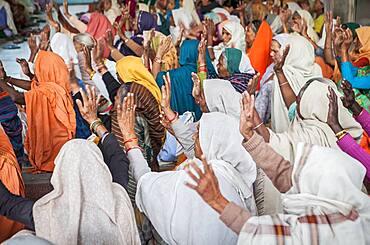 Widows praying in an Balaji ashram, Vrindavan, Mathura district, India