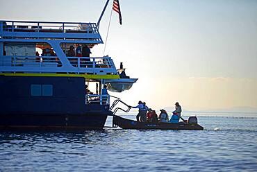 Zodiac passengers return to National Geographic Sea Bird, Sea of Cortez, Baja California, Mexico
