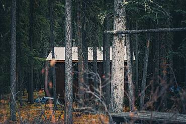 A simple trapper cabin in the woods of the Yukon Territory. Canada