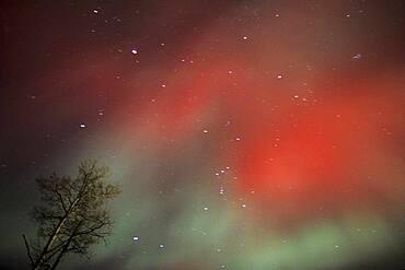 Aurora Borealis Northern Lights red explosion near Kleefeld, Manitoba, Canada