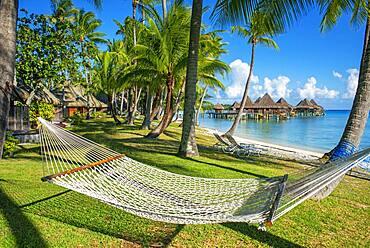 Hammock under coconut trees at Luxury Hotel Kia Ora Resort & Spa on Rangiroa, Tuamotu Islands, French Polynesia.
