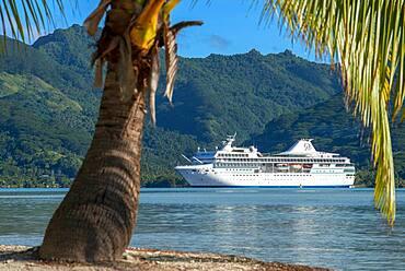 Paul Gauguin docked in the Island of Taha'a, French Polynesia. Motu Mahana palm trees at the beach, Taha'a, Society Islands, French Polynesia, South Pacific.