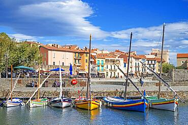 Typical boats and Notre-Dame-des-Anges church and landscape seaside beach of the picturesque village of Collioure, near Perpignan at south of France Languedoc-Roussillon Cote Vermeille Midi Pyrenees Occitanie Europe