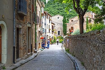 Old town, Languedoc-Roussillon, Cote Vermeille, Midi Pyrenees, Occitanie, France, Europe