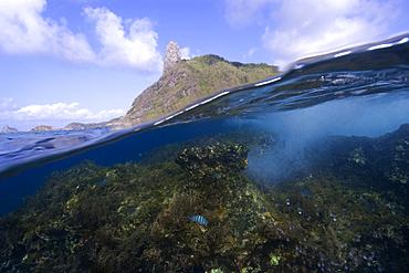 Morro do pico and wave breaking over reef, split level, Fernando de Noronha, Pernambuco, Brazil