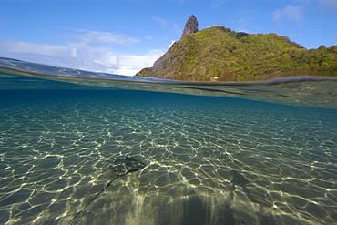 Split image of Southern stingray, Dasyatis americana, on the sandy bottom and Pico Hill, Fernando de Noronha, Brazil, South Atlantic