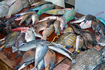 Reef fishes for sale in the Suva market, Suva, Viti Levu, Fiji, South Pacific