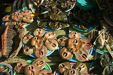 Dried stingrays for sale at Jagalshi seafood market, Busan, South Korea.