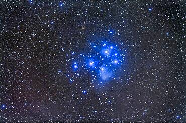 The Pleiades star cluster, aka Seven Sisters, or M45, in Taurus. A deep exposure showing the reflection nebulosity which fills the area. This is a stack of 5 x 14 minute exposures with the TMB 92mm apo refractor and Borg 0.85x flattener/reducer at f/4.8 and Canon 5D MkII at ISO 800. Taken from home Oct 9/10, 2013.