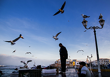 The harbour of Essaouira when the fish boats just arrive in the afternoon