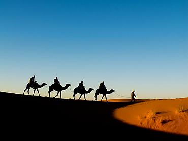 Camel caravan tourists in the Erg Chebbi sand dunes