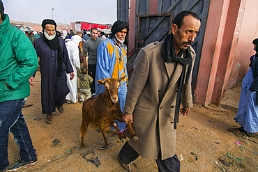 People and animals in the animal market in Guelmim