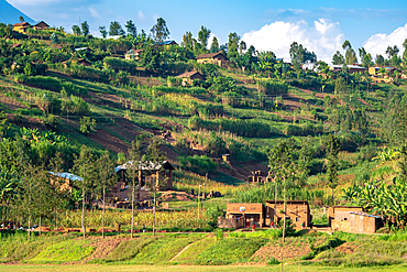 Simple construction homes terraced throughout the hilly countryside in northwest Rwanda