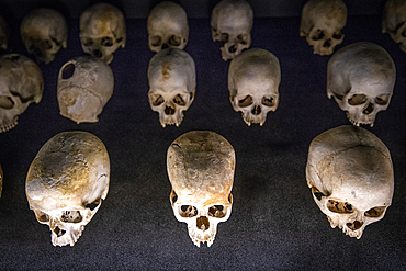 Damaged skulls of known victims of the 1994 Rwandan Genocide remain interred inside of of the Kigali Genocide Memorial as a testament to those lost in the brutality, Kigali, Rwanda.