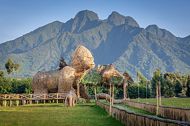 Gorilla Naming ceremony grounds, Volcanos national park, Rwanda.