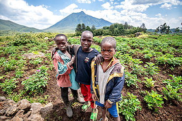 Kids in Potato field on small farms near Volcanos National Park, Rwanda