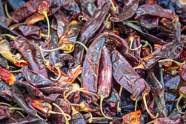 Close up on dried red chili peppers, Debre Berhan, Ethiopia