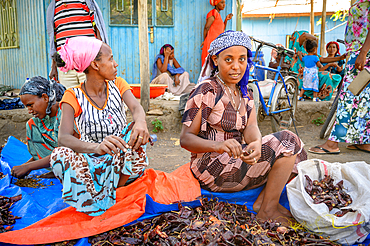 Woman sit together and sort through dried red chili peppers at outdoor market, Debre Berhan, Ethiopia