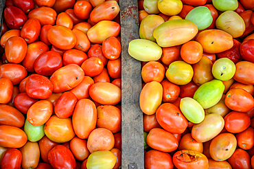 Close up on pile of small tomatoes in bins, Debre Berhan, Ethiopia