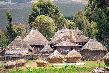 Straw thatched huts in the villages outside of Debre Berhan, Ethiopia.