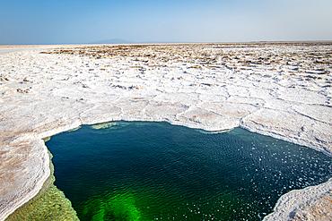 Water of Lake Karum, visible through a hole in the salt flat, Danakil Depression, Ethiopia.