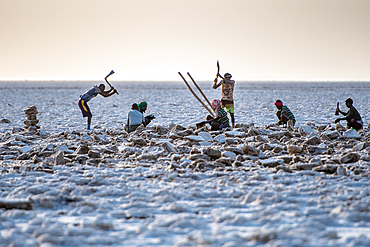 Salt miners dig away at the salt flats in the Danakil Depression, Ethiopia.
